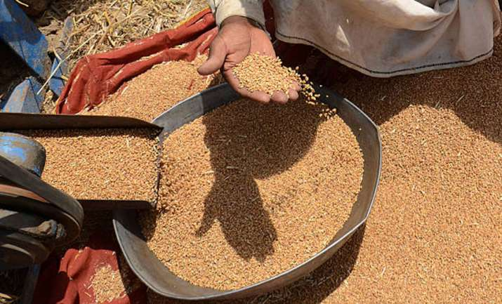 Wheat procurement- IndiaTV Paisa