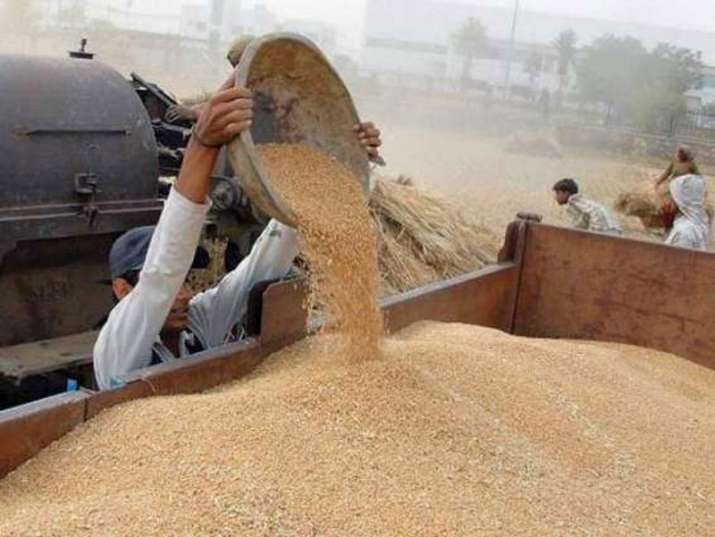 Wheat procurement target 85 percent achieved - IndiaTV Paisa