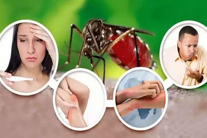 national Dengue day- Khabar IndiaTV