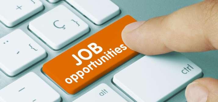 Job Opportunities- India TV Paisa
