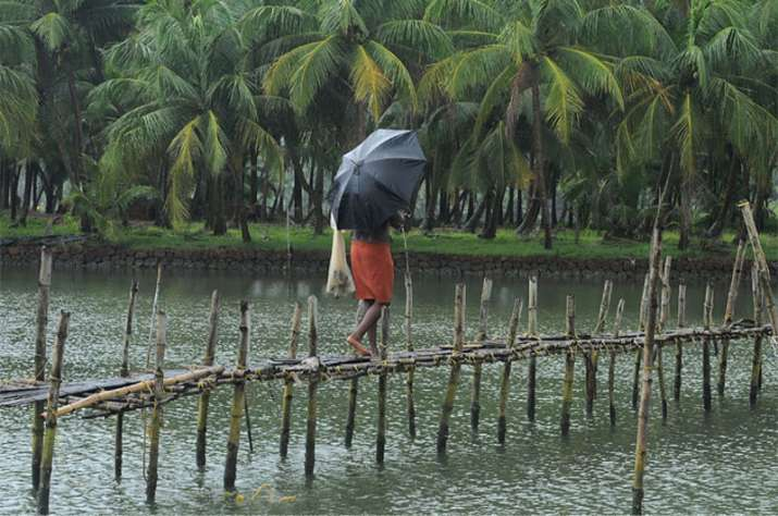 Monsoon likely to hit Kerala in 24-48 hours says Skymet Weather- India TV Paisa