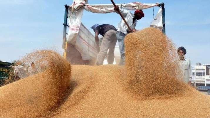 Wheat procurement for 2018-19 season surpasses target - India TV Paisa