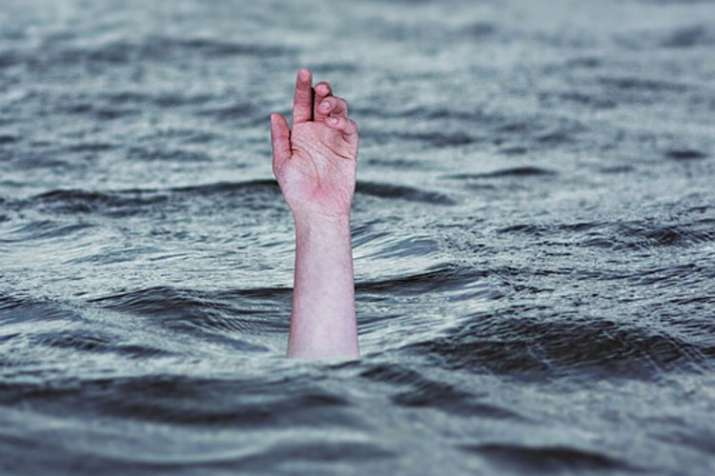 Jammu Kashmir: Youth drowns while saving dog in Srinagar | Pixabay Representational- India TV