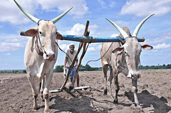 Farm Loan Waiver- India TV Paisa