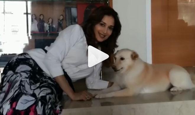 माधुरी दीक्षित- India TV