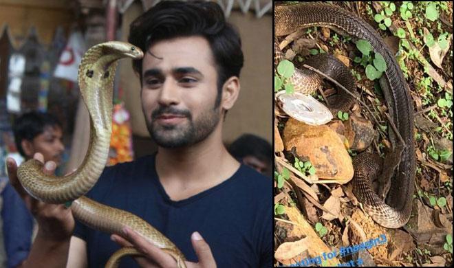 नागिन 3- India TV