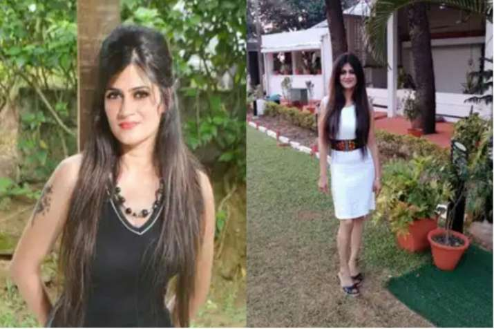 शैलजा द्विवेदी।- India TV