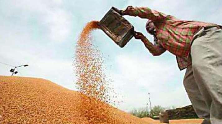 Wheat Procurement- India TV Paisa