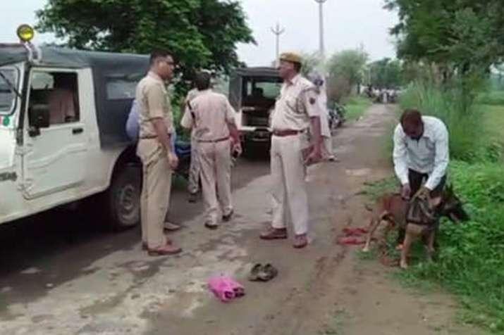 अलवर में गो तस्करी के आरोप में हरियाणा के शख्स की पीट-पीटकर हत्या- India TV