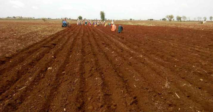 Kharif Sowing in Gujarat lagging behind by 45 percent till July 10th - India TV Paisa