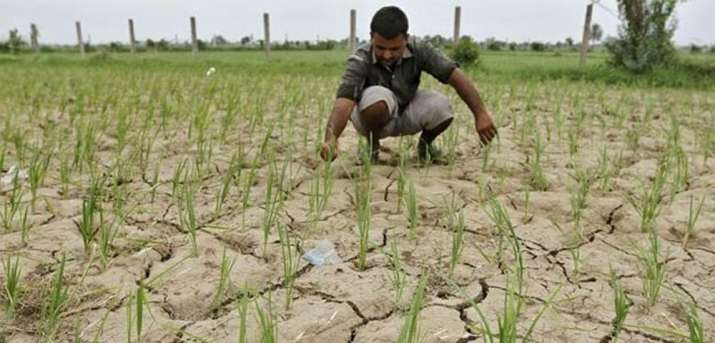 Rainfall deficit widens to more than 50 percent in 103 districts till July 14th- India TV Paisa