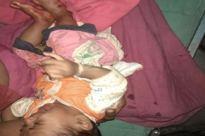 Leopard attacks couple on motorcycle snatches infant in...- India TV
