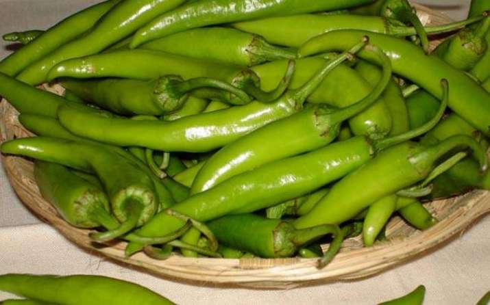 green chilli- India TV Paisa