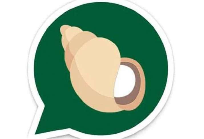 Patanjali launches WhatsApp rival Kimbho today- India TV Paisa