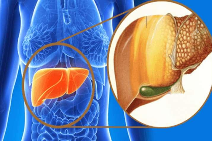 fatty liver- India TV