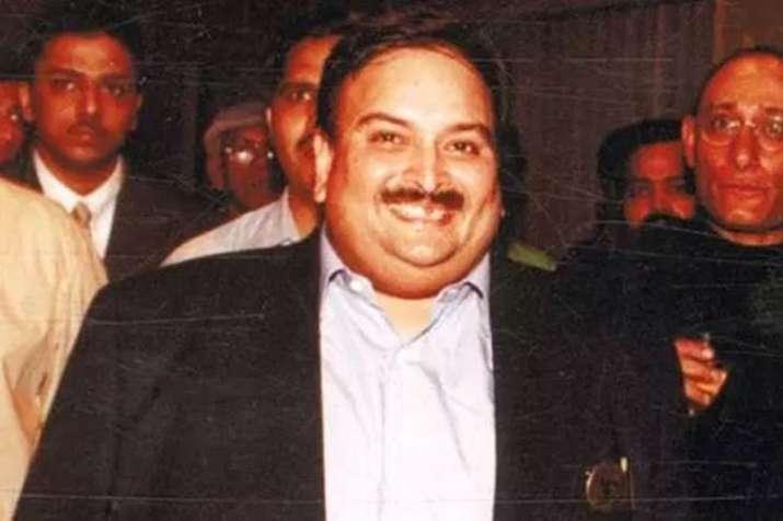 Mehul Choksi's properties are money laundering assets, says PMLA Authority- India TV Paisa