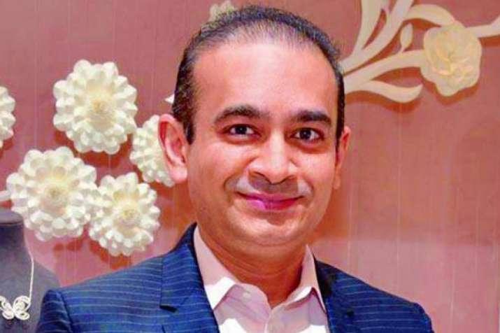 नीरव मोदी को गुजरात की अदालत ने 'घोषित भगोड़ा' करार दिया- India TV