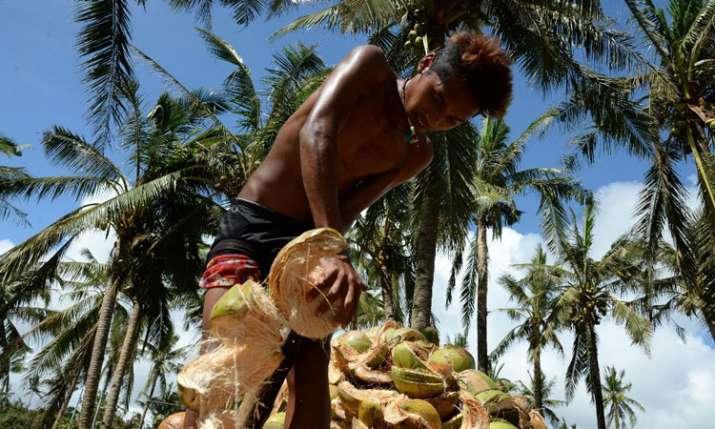 coconut growers- India TV Paisa