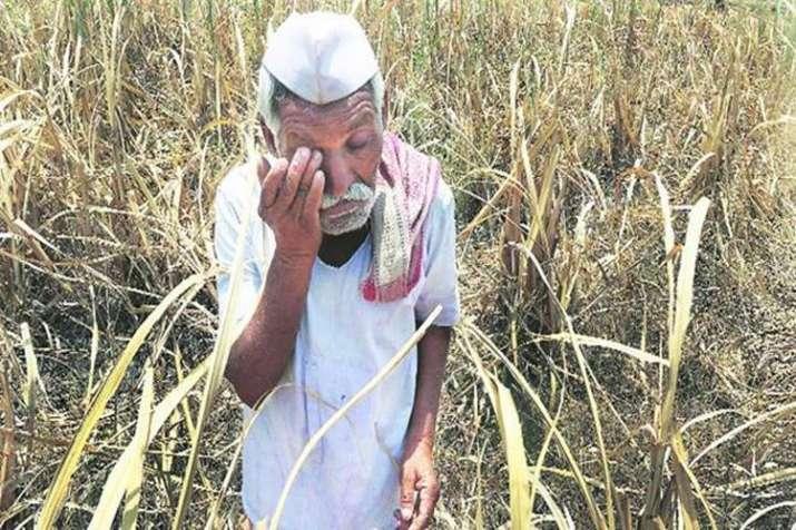 Prakash Javdekar's statement on farm loan waiver - India TV