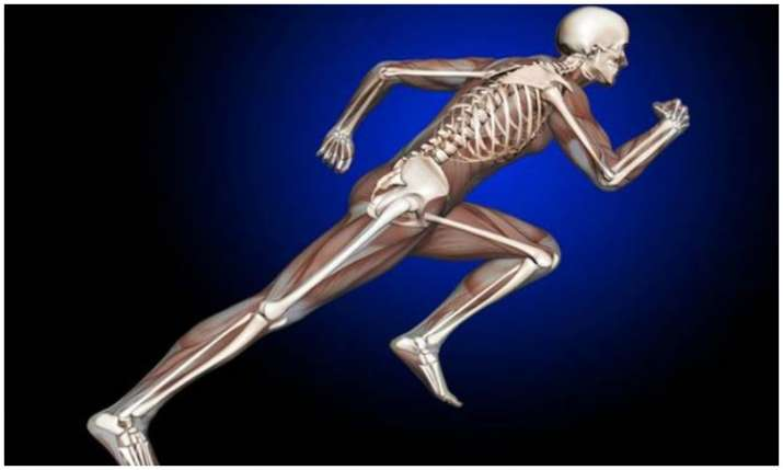 Healthy bones- India TV