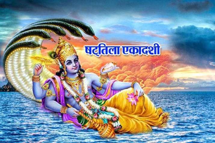 shattila ekadashi - India TV