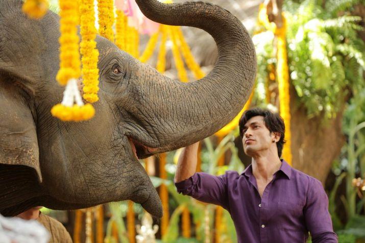 जंगली- India TV