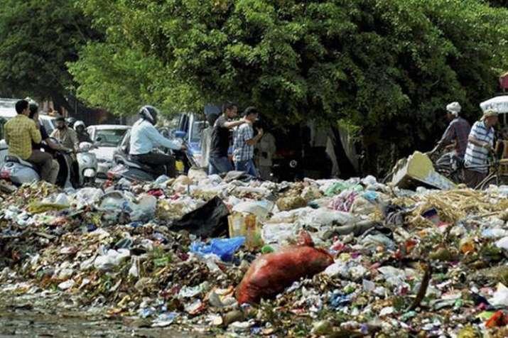 दिल्ली में हर साल पैदा होता है 40 लाख टन कचरा, तेज गति से हो रही है वृद्धि! | PTI File- India TV