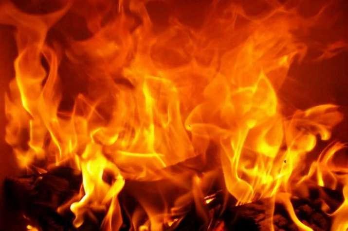 MNS burns packets of 'Pakistani' spices in Navi Mumbai- India TV