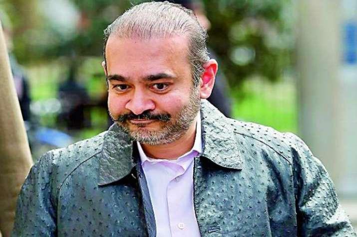 नीरव मोदी प्रत्यर्पण सुनवाई के लिए लंदन जाएगी सीबीआई-ईडी टीम- India TV