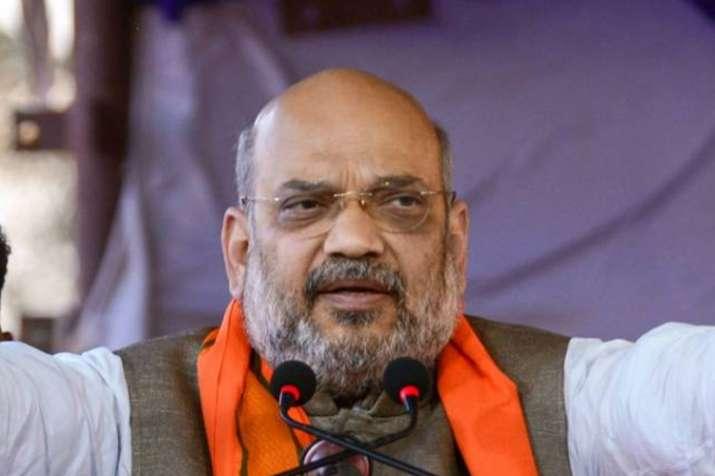 भाजपा भारत में दो प्रधानमंत्री कभी नहीं बनने देगी: शाह- India TV