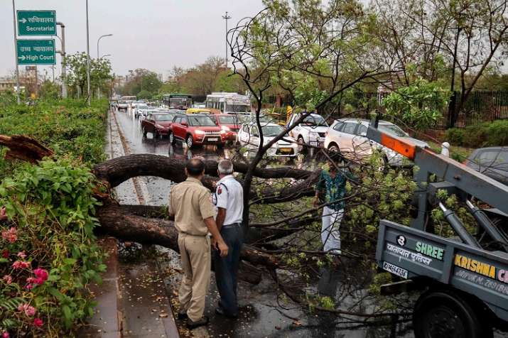 Police personnel look on as people remove a fallen tree...- India TV