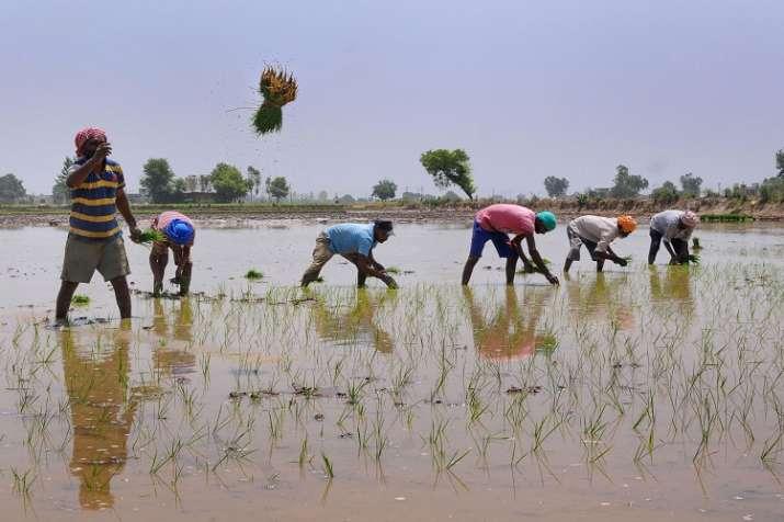 farmers- India TV