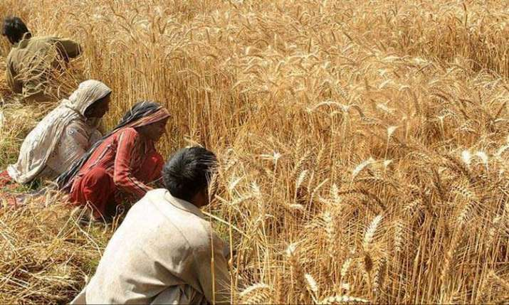 Farmers can now form cooperatives- India TV Paisa