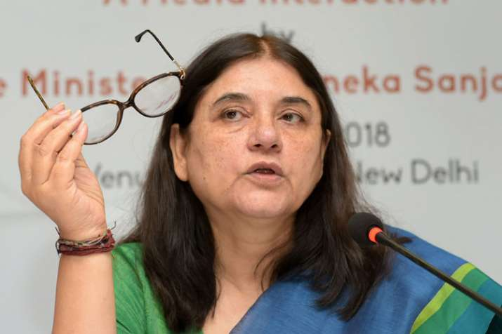 Maneka Gandhi visits Sultanpur, says people will answer why she was dropped from cabinet | PTI File- India TV