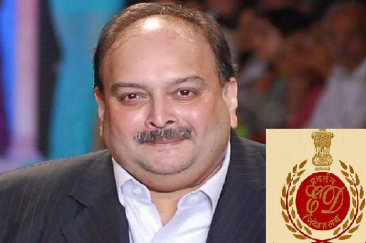 enforcement directorate ed tells bombay high court it will provide air ambulance with medical expert- India TV Paisa
