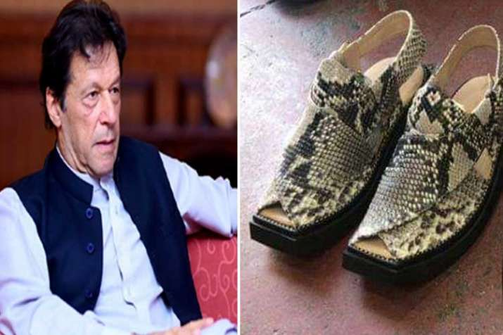 Wildlife officials in Pak seize snakeskin sandals meant...- India TV