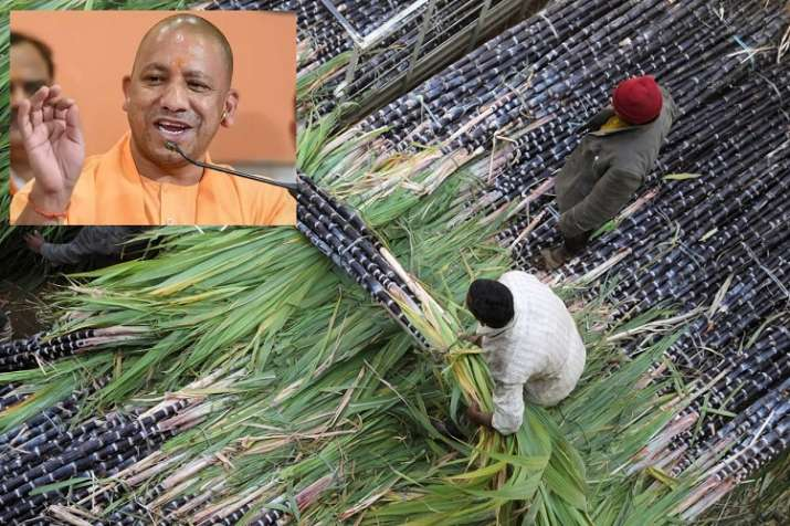 Up CM Yogi Adityanath said sugar Mill owner give full payment of sugarcane price by August- India TV Paisa