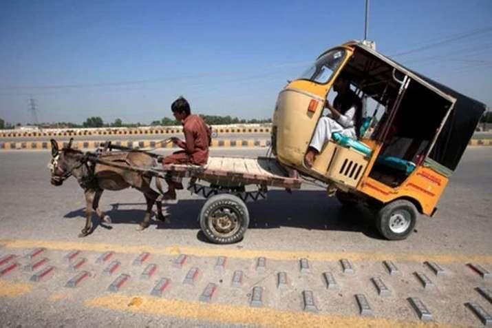 Pakistan Economy- India TV