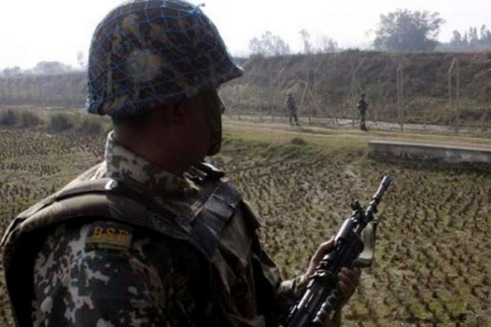 Jawan injured as cattle smugglers attack BSF team on...- India TV