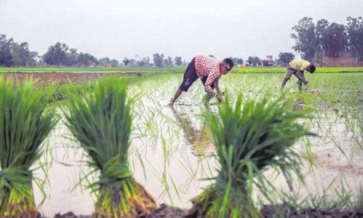 MSP for Kharif crop hiked,- India TV Paisa