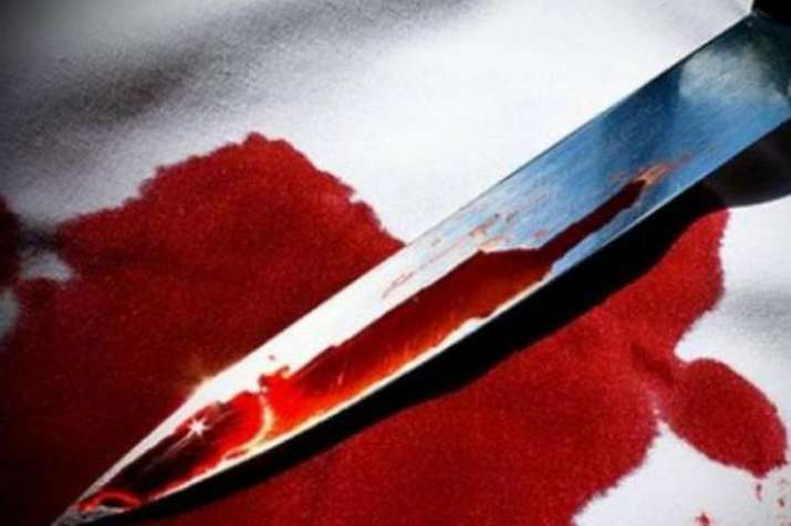 Man kills mother in northwest Delhi, surrenders before police | PTI Representational - India TV