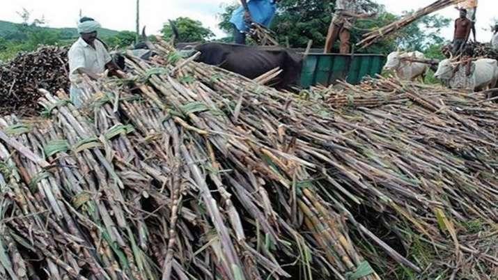 Fair and Remunerative Price of sugarcane- India TV Paisa