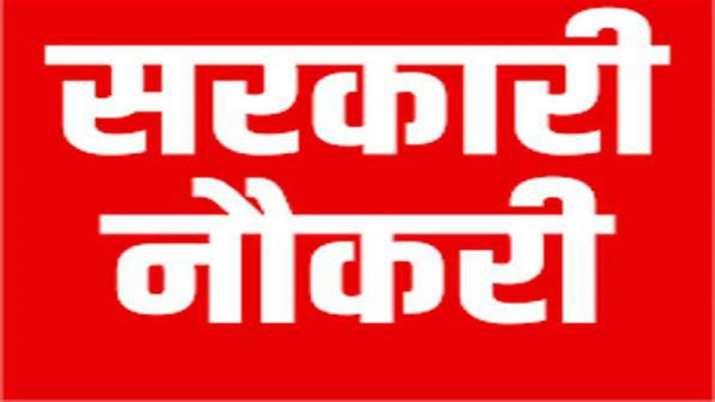 sarkari naukari 2019- India TV