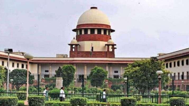 राम लला के वकील ने न्यायालय से कहा, विवादित स्थल पर देवताओं की आकृतियां मिली है- India TV
