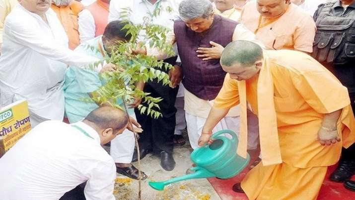 'Vriksharopan Mahakumbh' launched with target to plant 22 cr saplings in UP- India TV