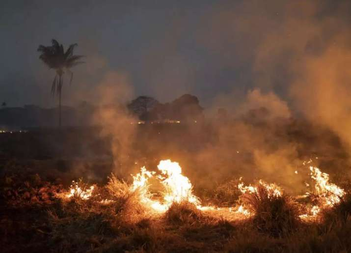 amazon forest fire- India TV