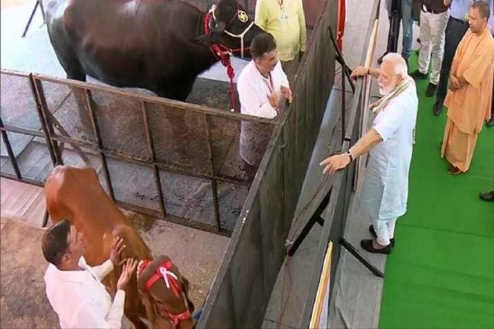 पीएम मोदी का मथुरा दौरा- India TV