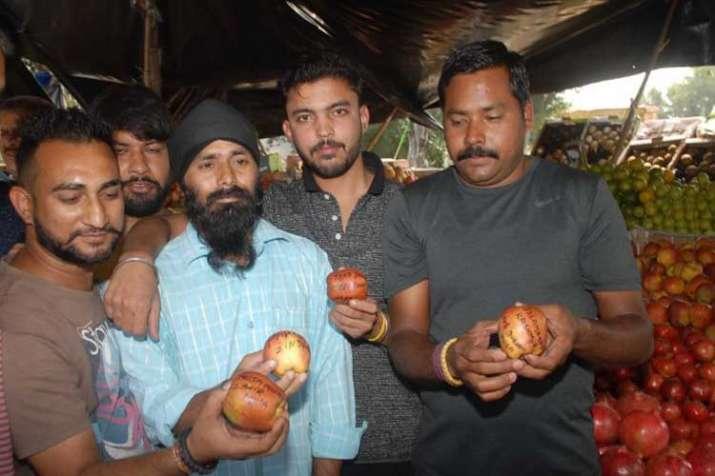 'Azadi', 'Burhan Wani' written on apples from Kashmir;...- India TV