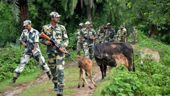 16 Bangladeshis held in BSF raids in West Bengal- India TV