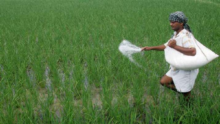 IFFCO reduces retail prices of non-urea fertilisers by Rs 50/bag - India TV Paisa